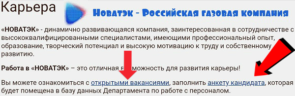 Новатэк  Российская газовая компания кадровый резерв