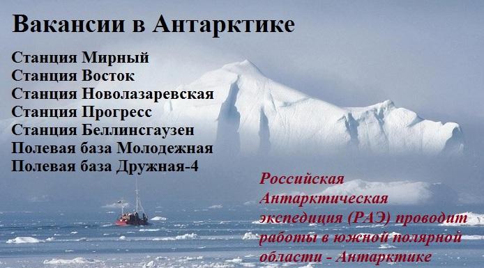 работа в Антарктике